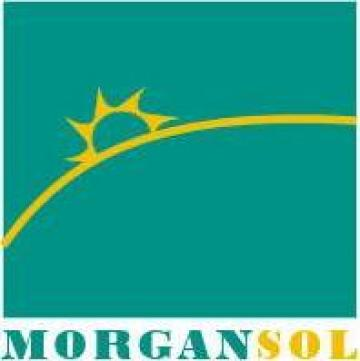 Medicina muncii si protectia muncii si PSI de la Morgan Sol