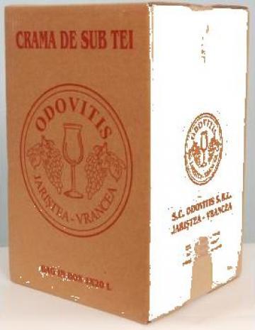 Vin Bag in box 20 L de la Sc Odovitis Srl