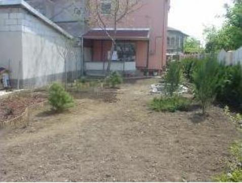 Erbicidare gazon sau terenuri infestate cu buruieni