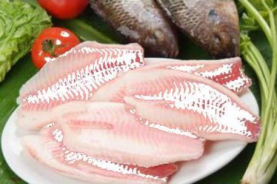 File congelat peste Tilapia de la Expert Factor Foods Srl
