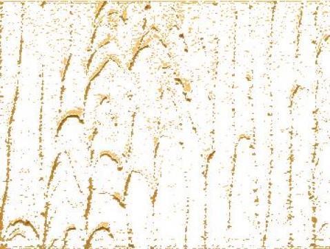 Tencuiala Decorativa Modele.Tencuiala Decorativa Bucuresti Rainbow Land Id 2108117