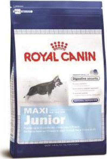 Hrana caini Royal Canin Maxi Junior de la Prato Impex