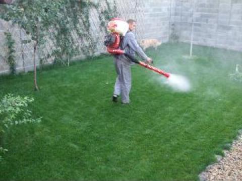 Intretinere gradini de la Garden Rustic Spatii Verzi