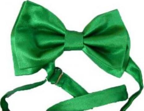 Papion verde cu batistuta de la Johnny Srl.
