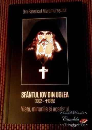 Carte, Sfantul Iov din Uglea de la Candela Criscom Srl.