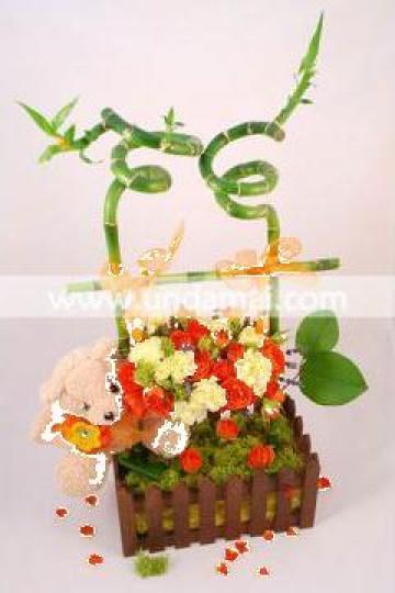 Aranjament floral botez - leagan de la Unda Mai Srl