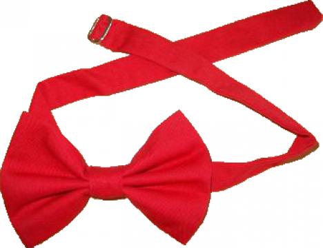 Papioane rosii unisex