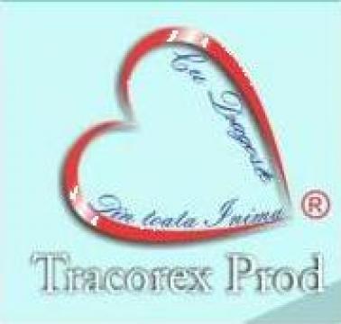 Coperta caiet A5 de la Tracorex Prod SRL