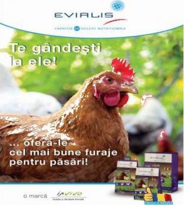 Furaje concentrate Evialis