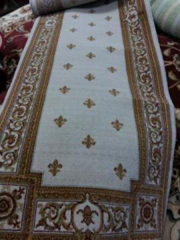 Carpeta Cisnadie 20