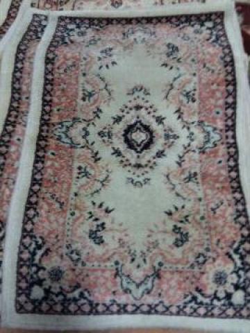Carpeta Cisnadie 24