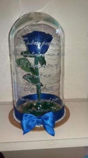 Trandafiri nemuritori in cupola de sticla