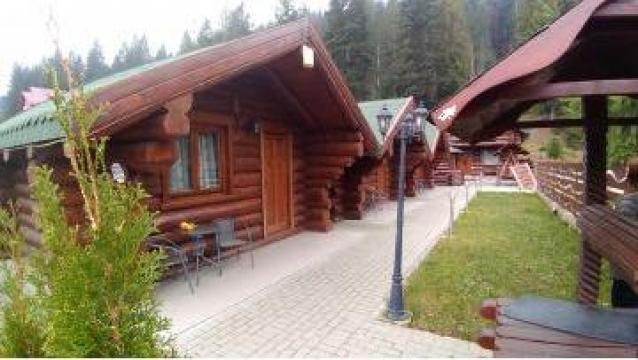 Porti din lemn masiv de la Log Homes S.r.l.