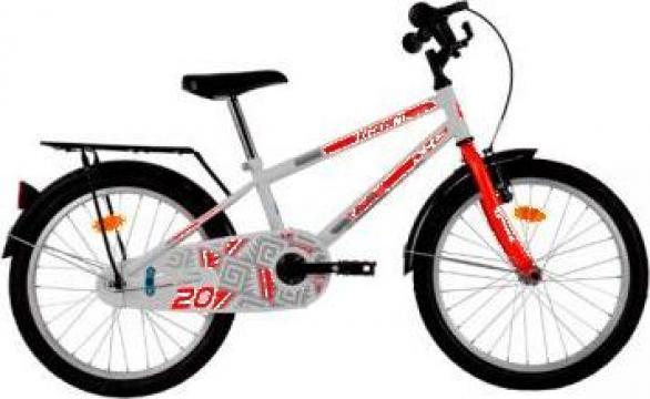 "Bicicleta copii 20"" - DHS-2003 de la Ilie M Florin Danut Inteprindere Individuala"
