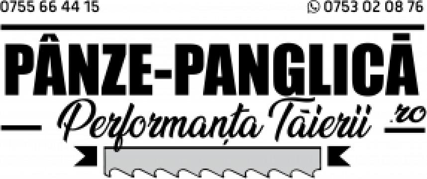Panza 3300x27x4/6 fierastrau panglica metal F.M.B Titan G de la Panze Panglica Srl