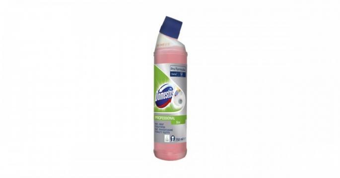 Detergent lichid de toaleta Domestos Professional Eco 750ml