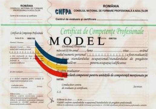 Evaluare competente profesionale Ospatar (chelner) de la Estetic Clas Tg Mures