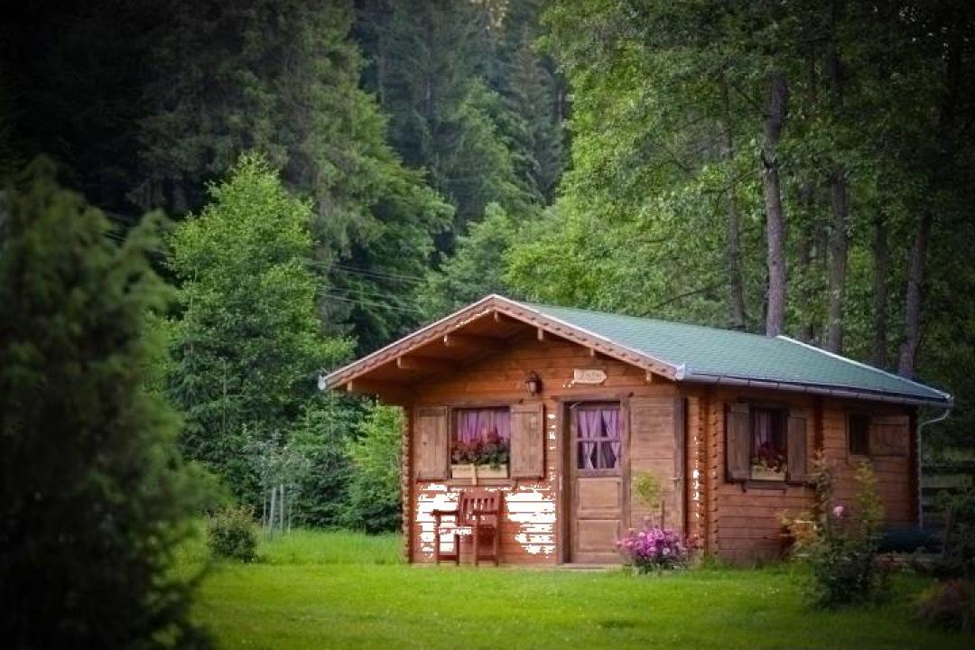 Casa din lemn Firtusu