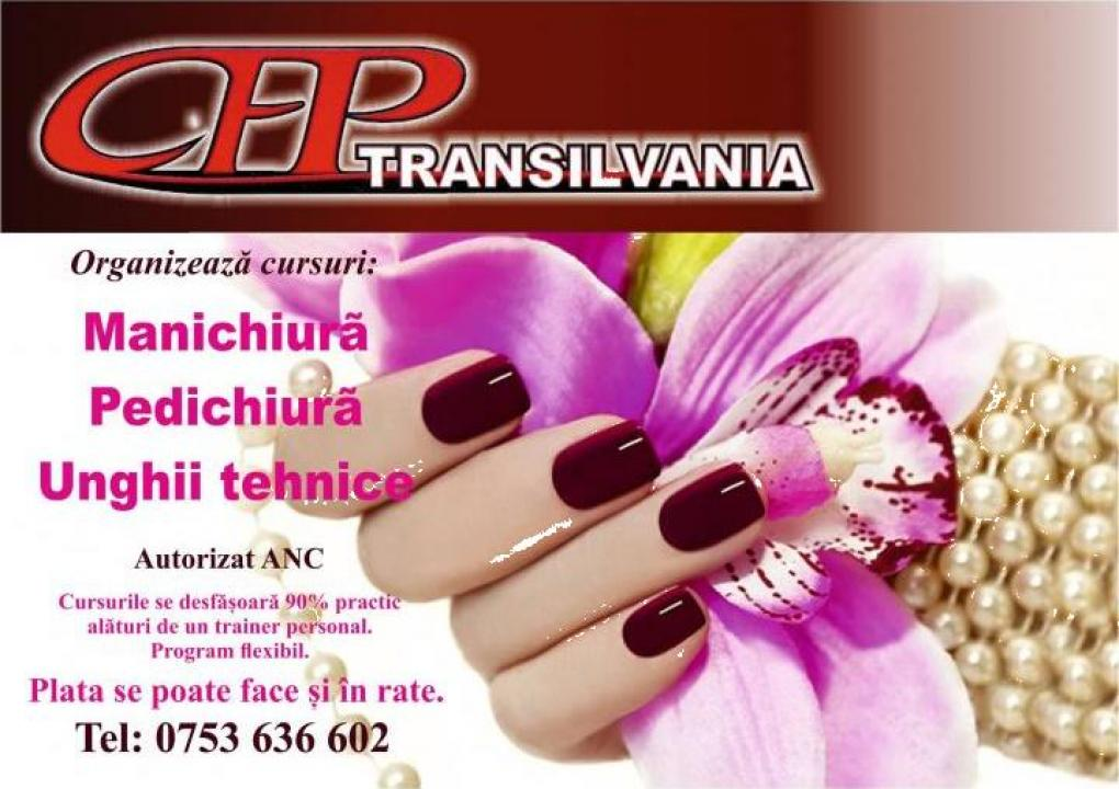 Curs Manichiura Pedichiura Unghii False Baia Mare Transilvania