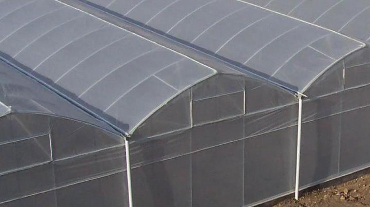 Folie solarii profesionala 6,5 m x 80 m