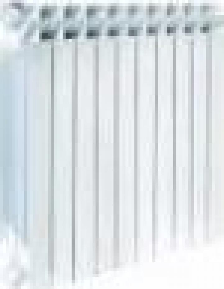 Radiator otel Daylux 600*1400