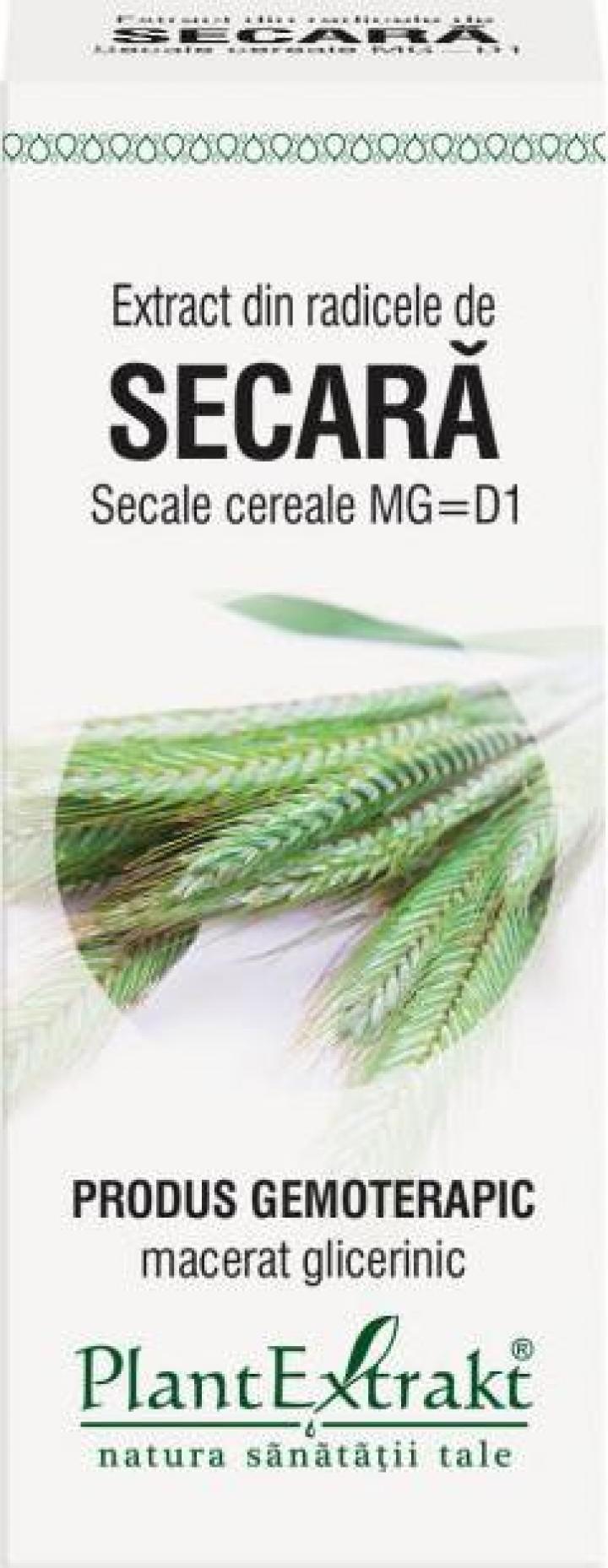 Extract radicele secara