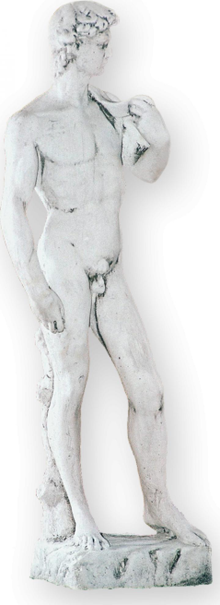 Decoratiune statuie gradina David S01