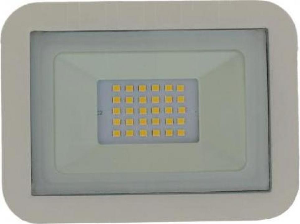 Proiector LED 20W 1600lm IP65 4000K alb Well